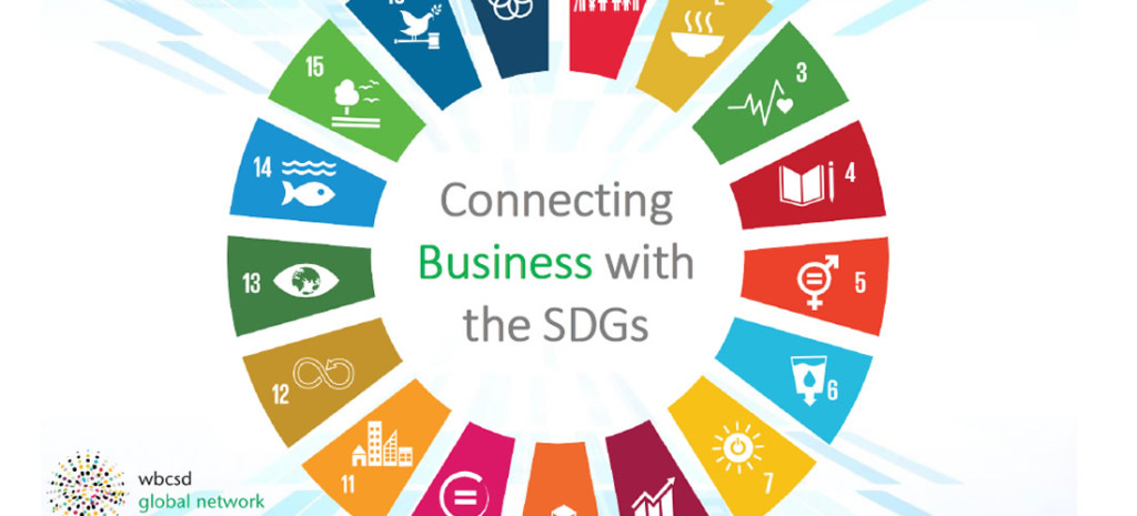 WBCSD – Global Network – briefing slides SDG