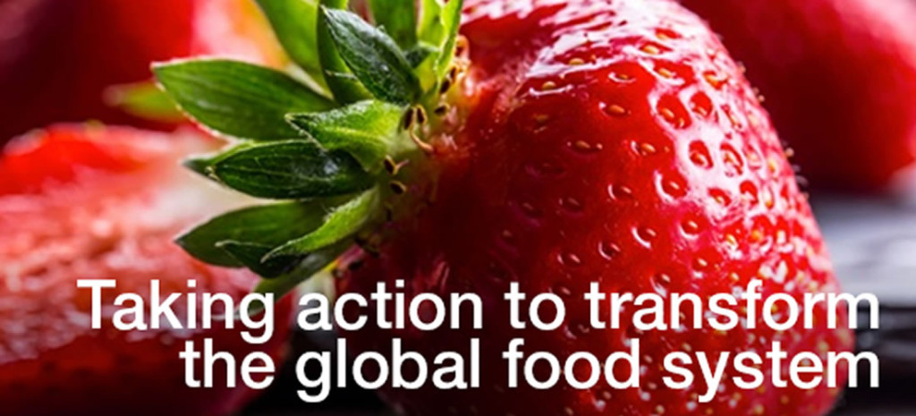 Taking action to transform the global food system