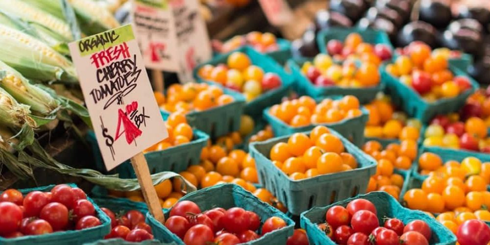 Changing our diet by 2050 is essential to achieving a sustainable future, new report reveals