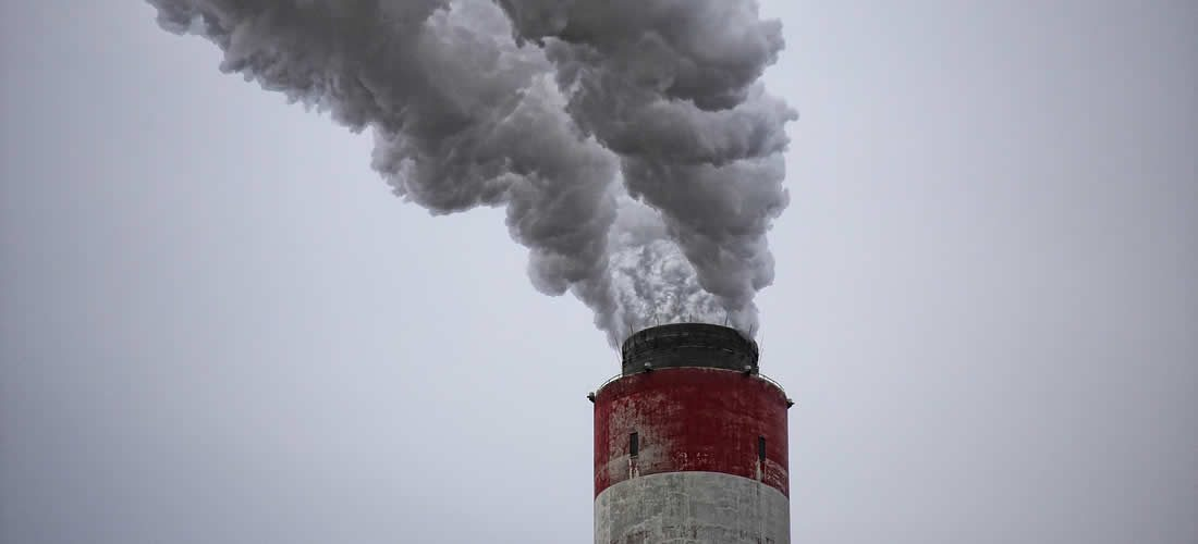 WHO study finds over 90% of children breathe toxic air every day