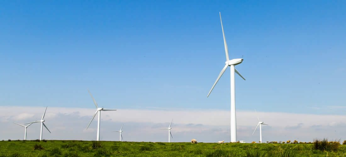 EU to be carbon-neutral by 2050