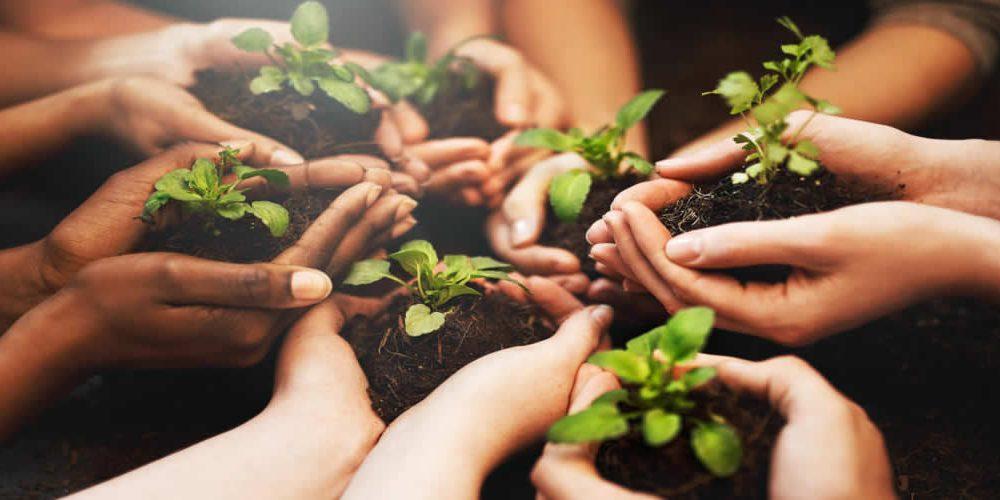 Indičtí podnikatelé podepisují iniciativní prohlášení o zeleném oživení (anglicky)