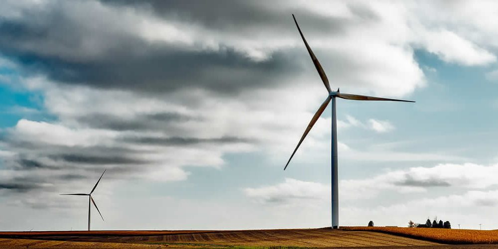 Renewable energy will be main source of global energy by 2040, finds BP