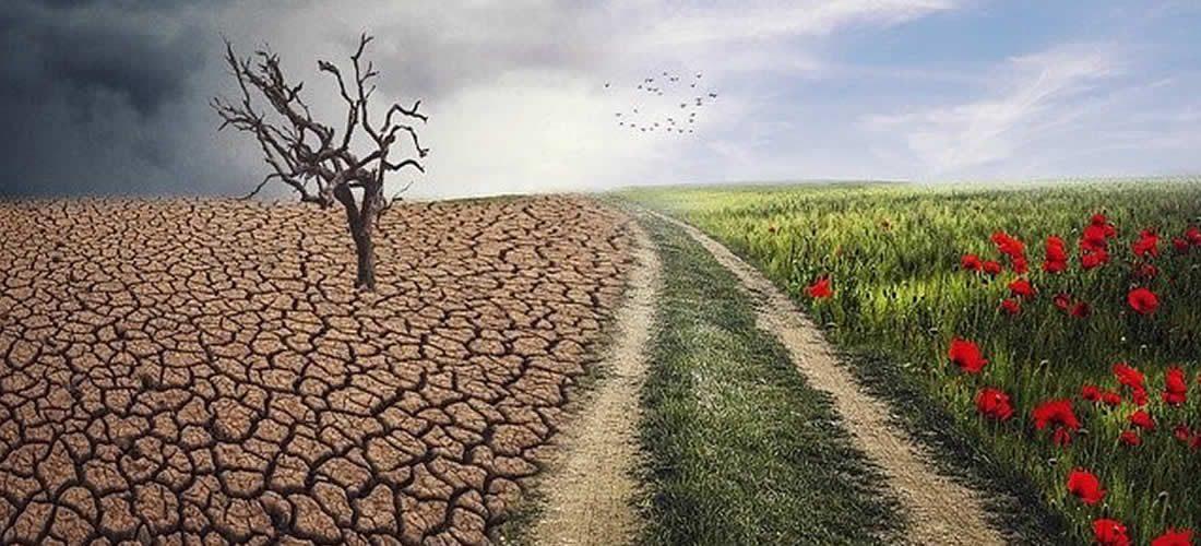 Evropská cesta ke klimatické neutralitě