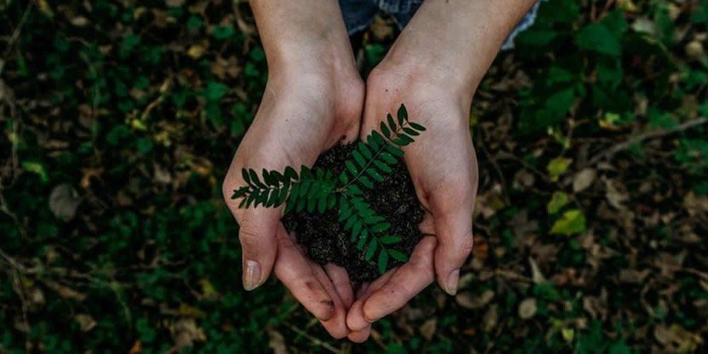 8 produktů, díky nimž bude váš životní styl udržitelný