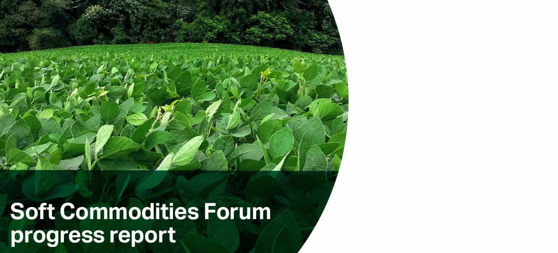 Zpráva o pokroku fóra Soft Commodities (anglicky)