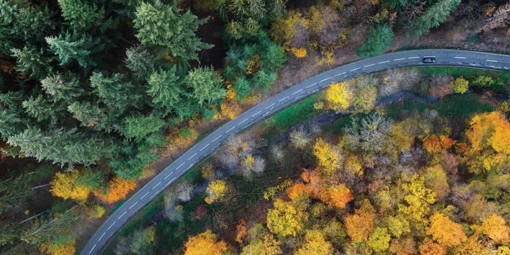 Generální ředitelé naléhají na vlády, aby do zelených plánů na obnovu zahrnuli záchranu přírody
