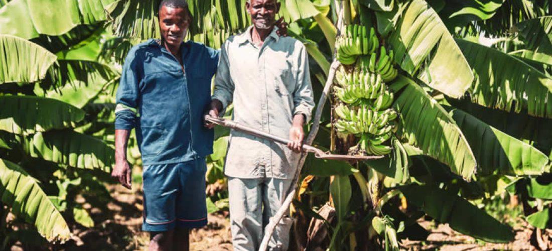 Nový soubor nástrojů pro pokrok vpolitice a praxi voblasti lidských práv vagropodnikání (anglicky)