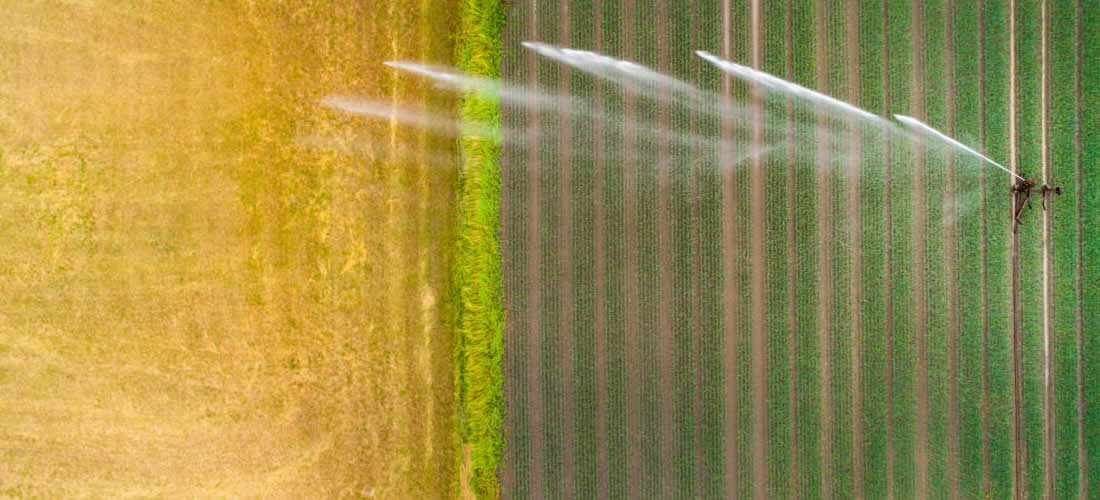Feeding a water-stressed world – how business and investors are responding