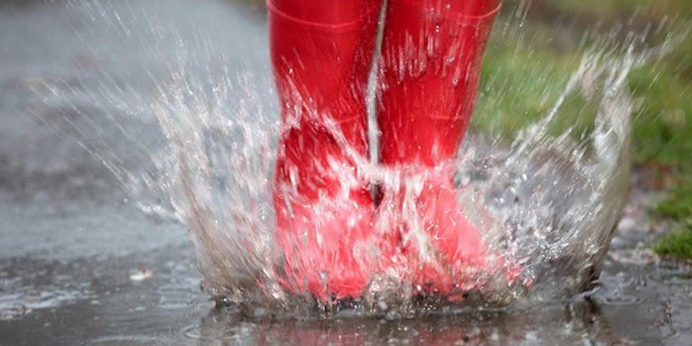 Výsledkem programu Dešťovka je nejdražší zavlažování na světě