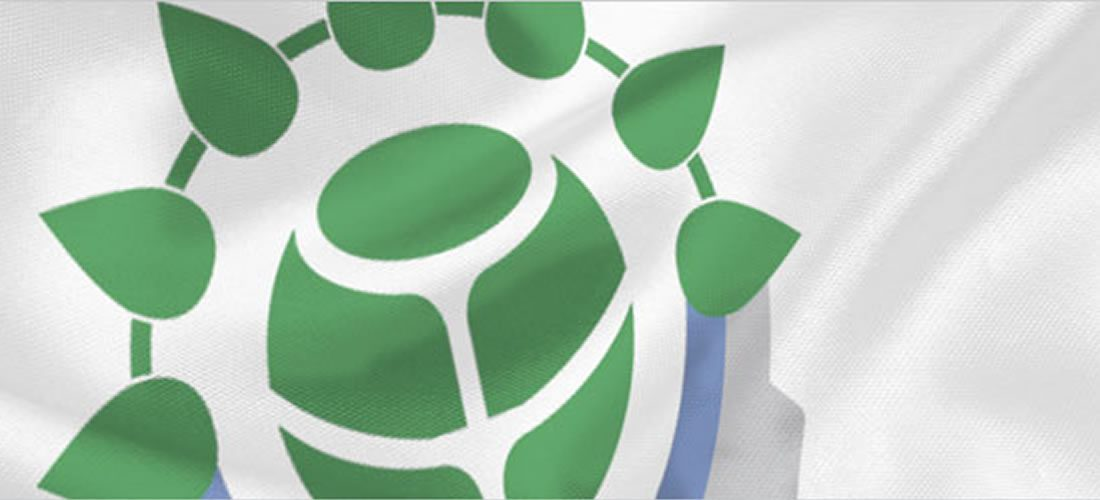 Engagement opportunities for Global Network partners in WBCSD work program 2016