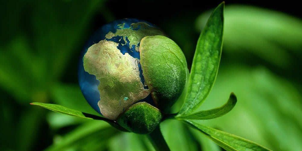 Mezinárodní klimatický klub