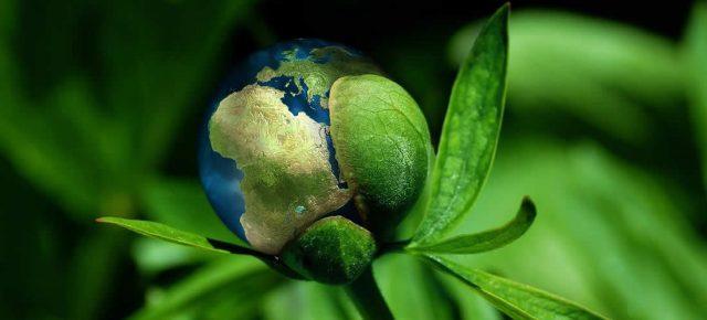 zelena planeta